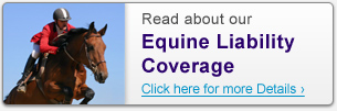 Read about our Equine Liability Coverage